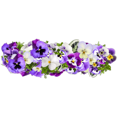 Lavender drawing png. Pink bunch of flowers