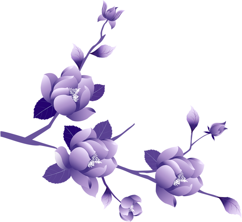 Lavender petals png. Transparent painted large purple
