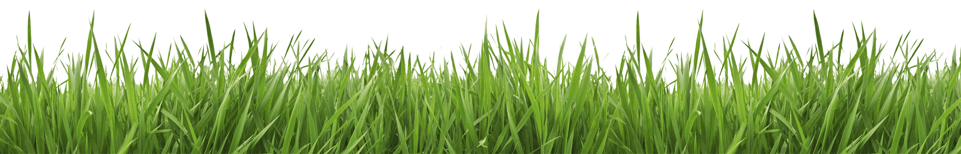 Lawn care clipart grass pattern. Brothers trimm quality services