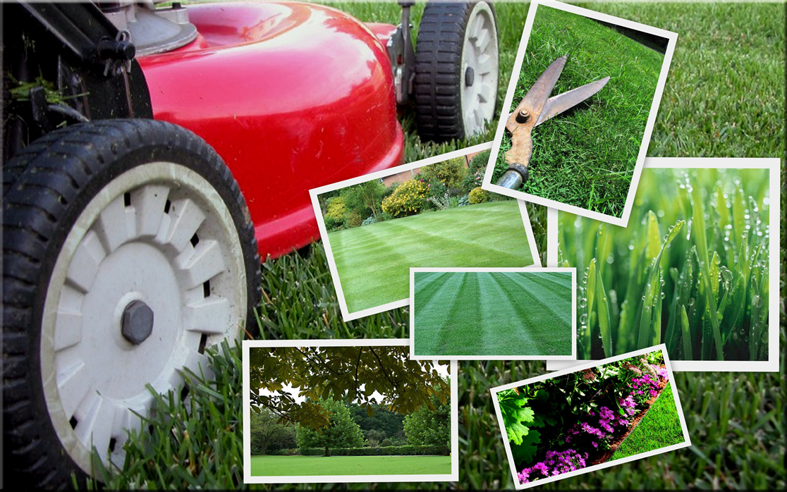 Lawn care clipart spring. Garden service manqal hellenes
