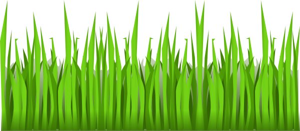 Lawn vector simple. Free cartoon grass download