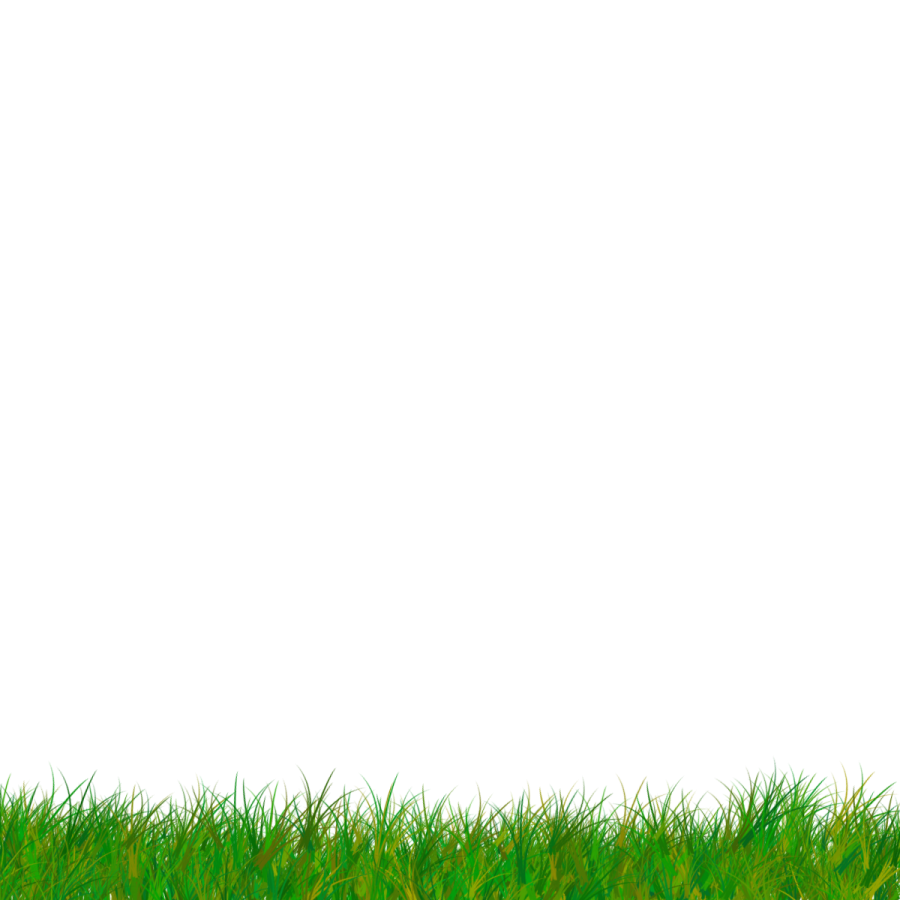 Grass cartoon png. Transparent vector clipart image
