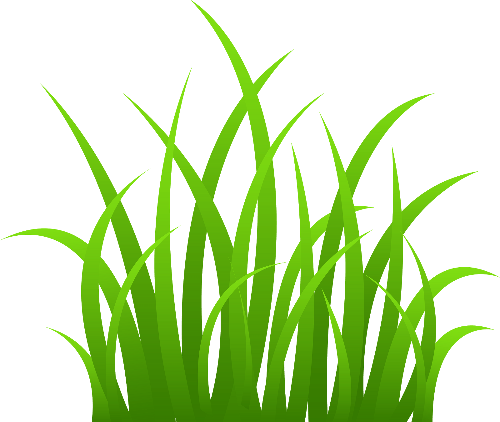 outline vector grass