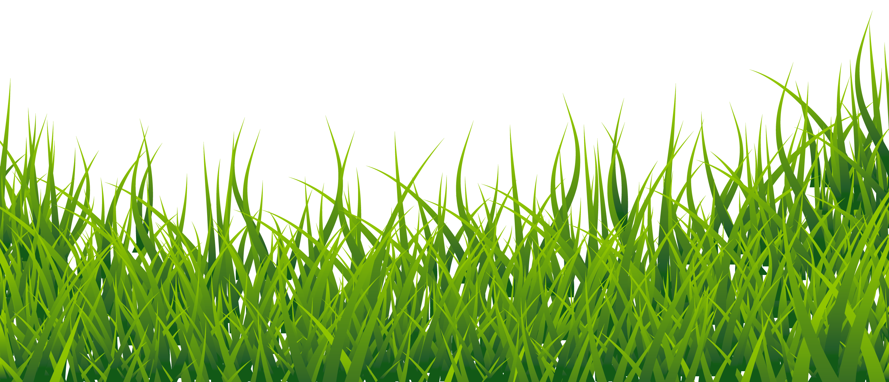 lawn vector green field