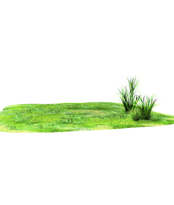 Lawn clipart grass patch. Side glance of land