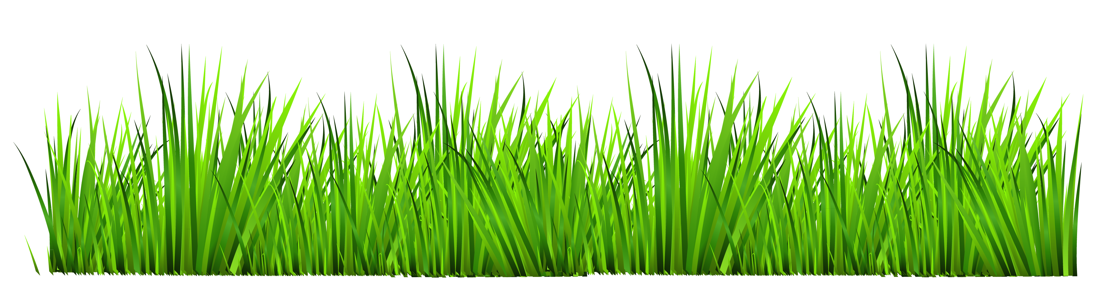Sprout clip grass. Golf jpg royalty