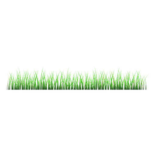Lawn vector tree grass. Illustration transparent png svg