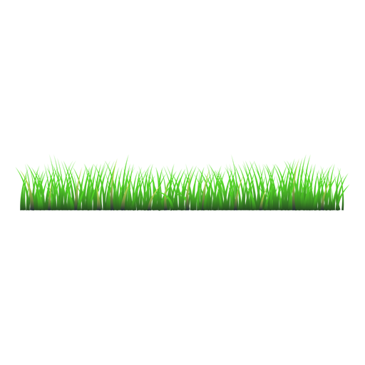 Lawn vector simple. Grass meadow illustration transparent
