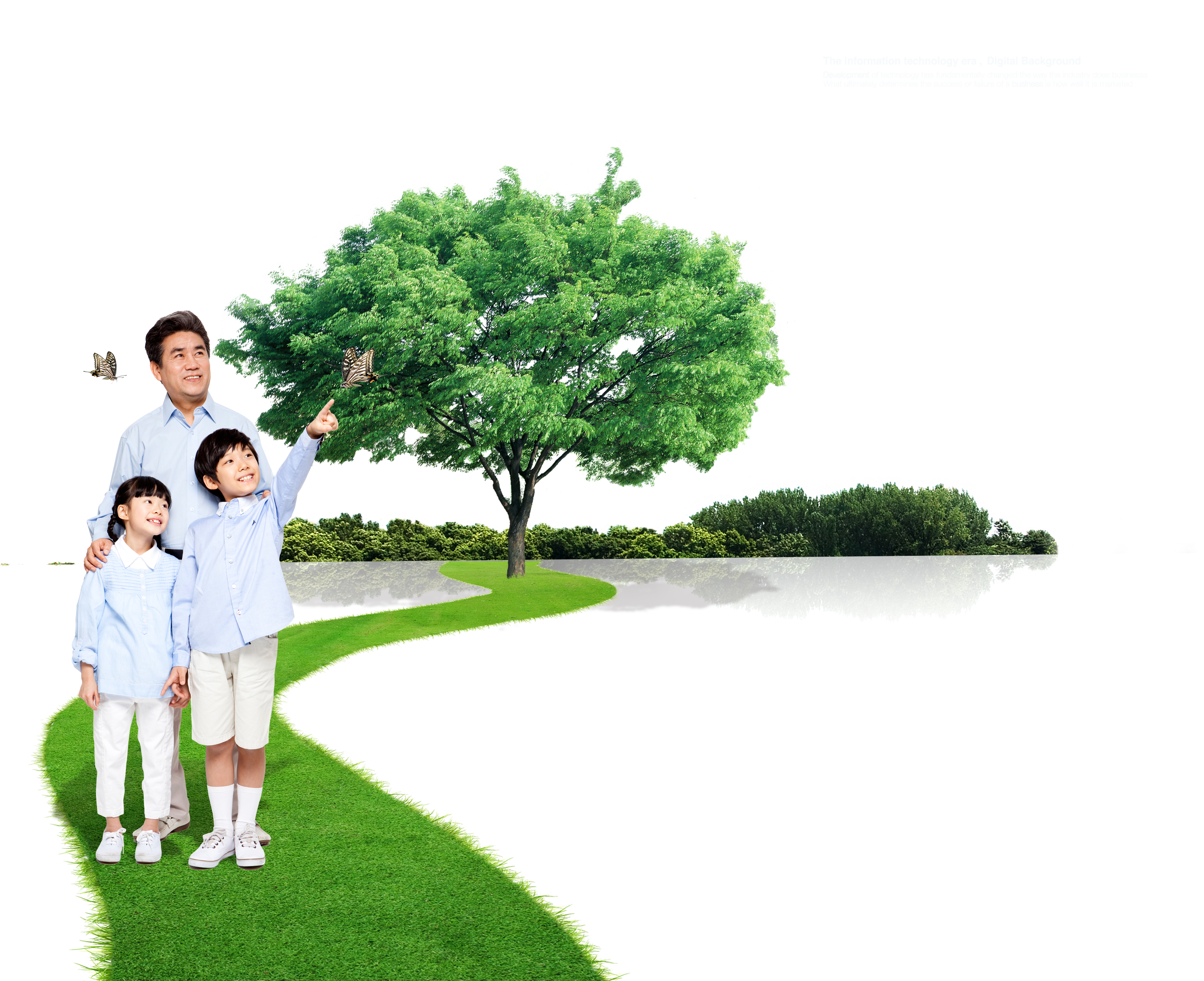 Lawn vector tree grass. Family environmental protection technology