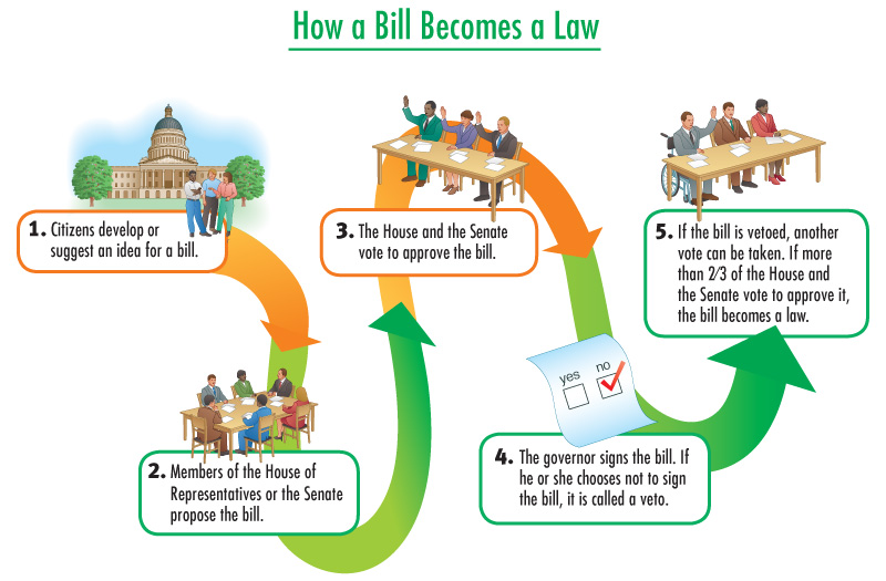 Laws clipart law paper. How a bill becomes