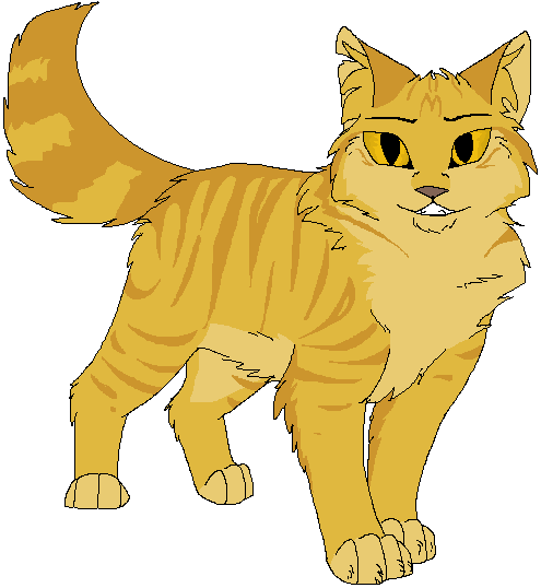 Laying ginger cats png. Golden tabby cat tumblr