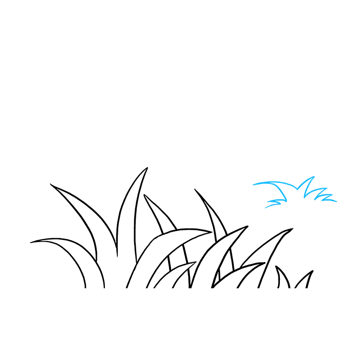 Vegetation drawing grass tree. How to draw really