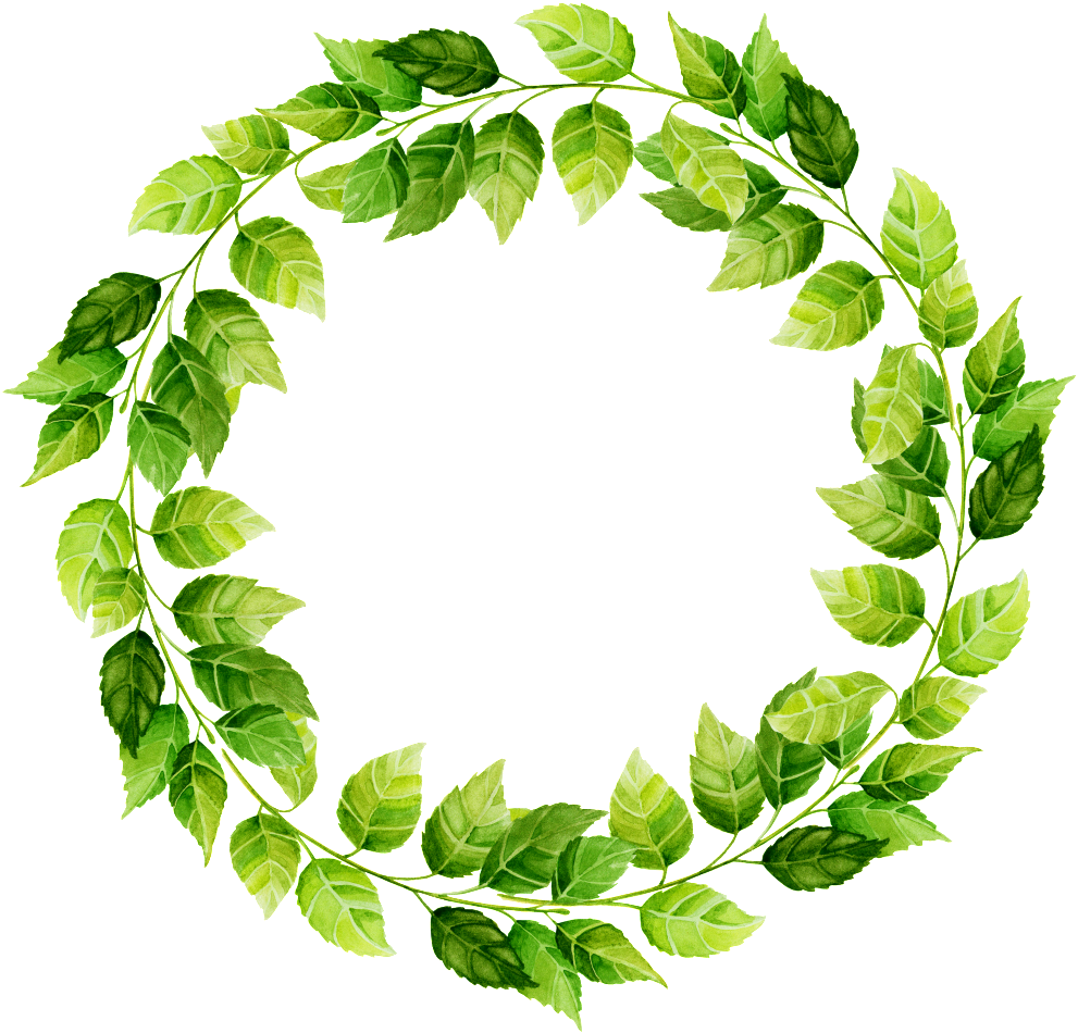 Leaf circle. Download dibujado a mano