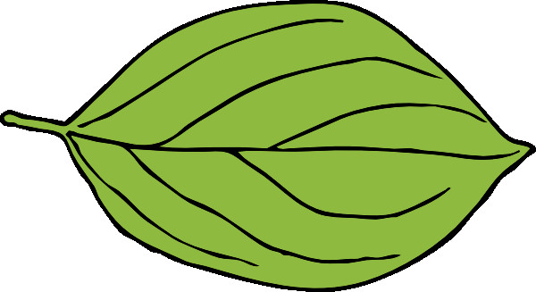 Leaf clipart. Collection of apple
