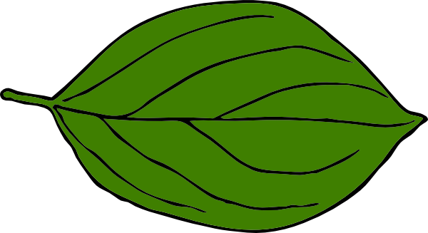 Leaf clipart. Dark green