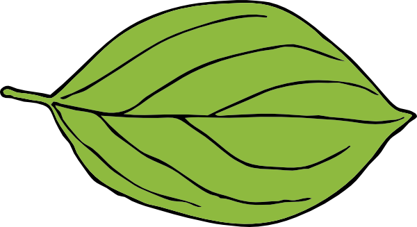 Leaf clipart apple tree. Clip art at clker