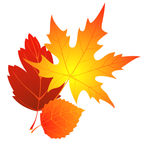 Fall leaf clip art png. Transparent leaves clipart gallery