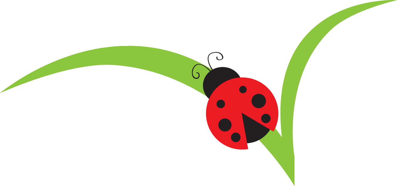 Free lady bug cliparts. Leaf clipart insect royalty free stock