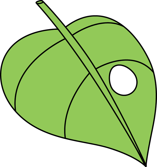 Leaf clipart insect. Butterfly egg on a