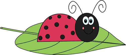 Leaf clipart ladybug. On a clip art