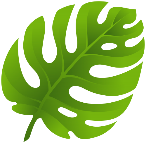 Tropical plant leaf png. Exotic clip art photo