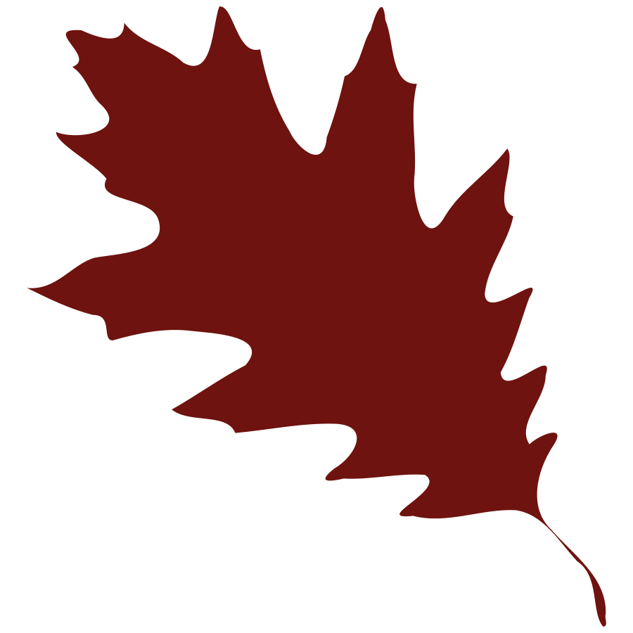 Leaf clipart silhouette. Maple leaves at getdrawings