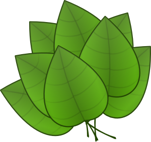 Leaf clipart. Green pumpkin panda free