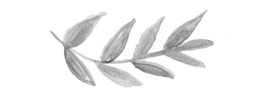 Leaf doodle png. Morning star farm anniversary
