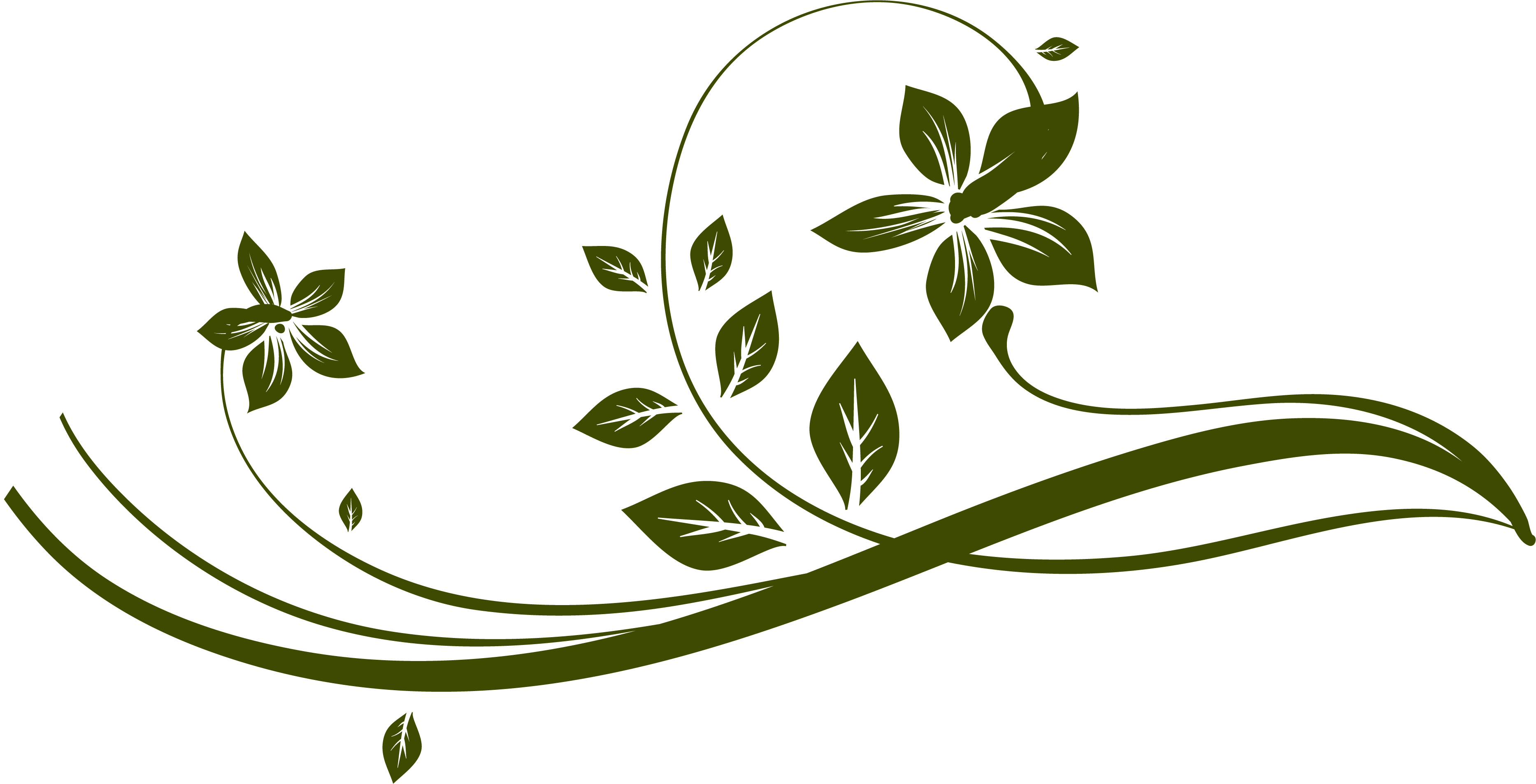 Leaf flourish png. Index of skin frontend