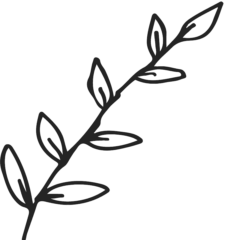 Leaf outline png. Branch with leaves rubber