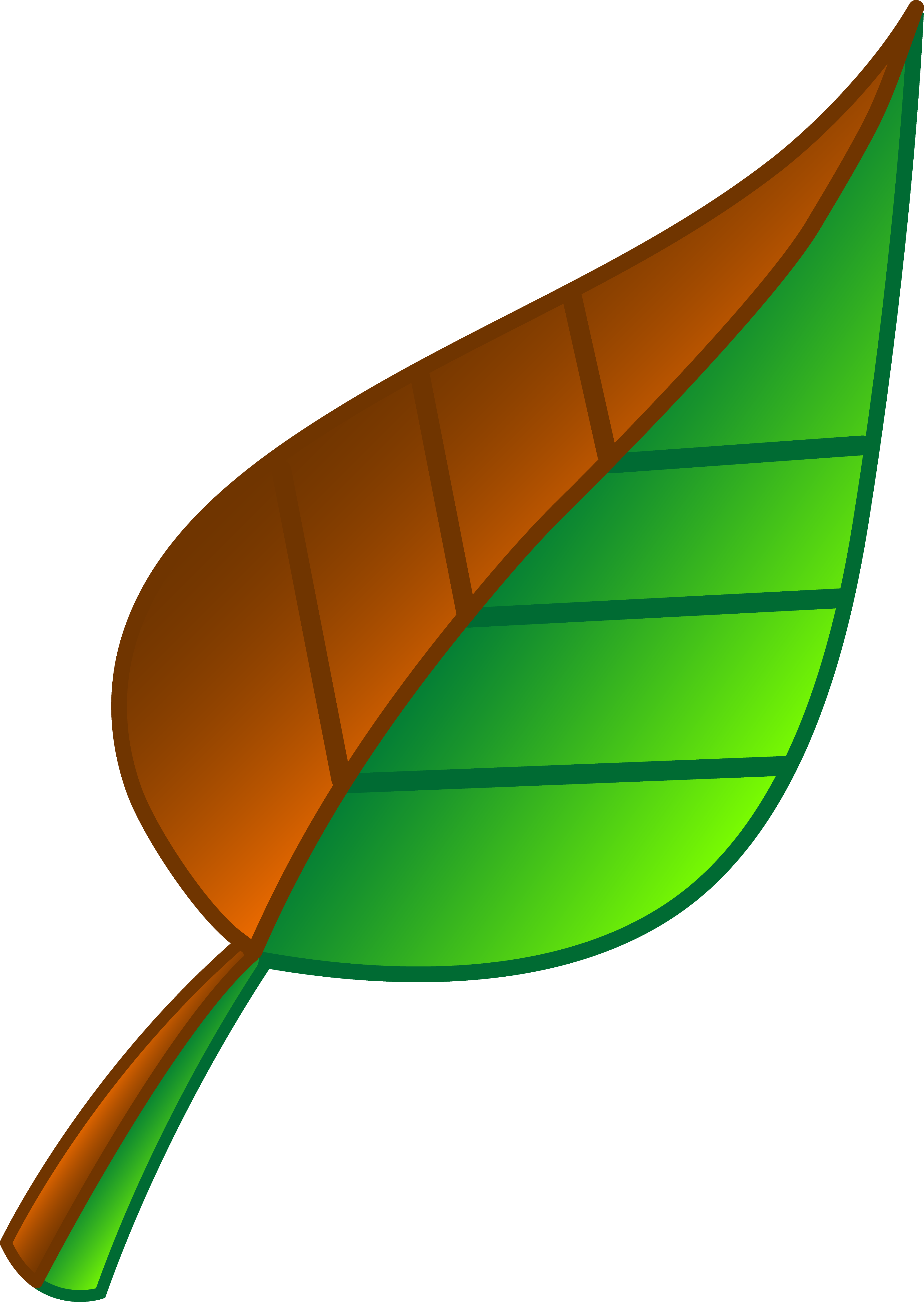 Leave vector clipart. Brown and green leaf
