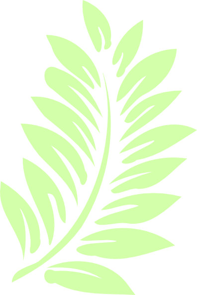 Leave vector frond. Palm leaf clip art