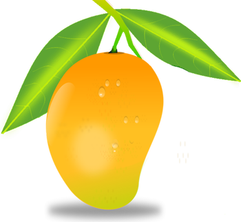 Leave vector mango tree. Collection of free arangoes