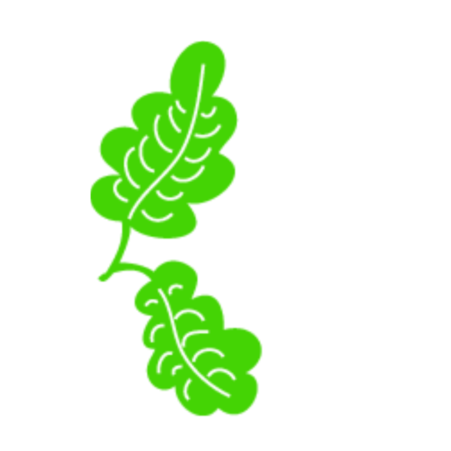 Leave vector psd. Green leaf png free