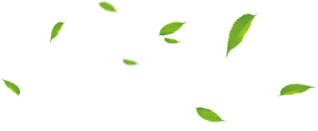 Leaves blowing png. Images in collection page