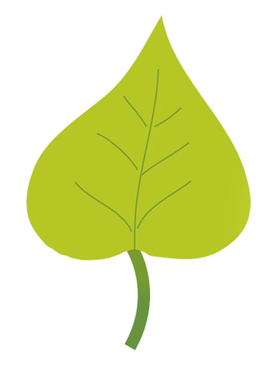 leaves drawing png
