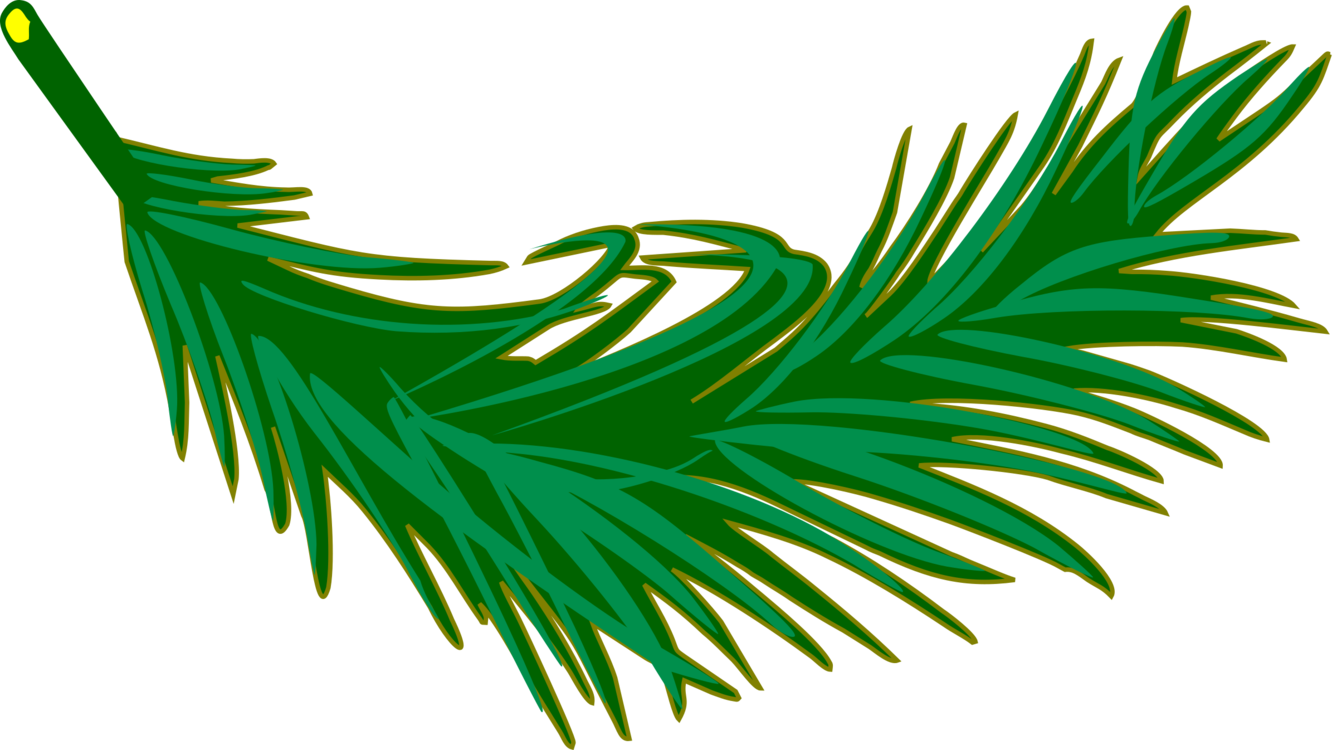 Leaves clipart palm branch. Trees leaf manuscript frond