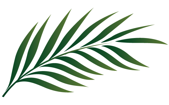 gold palm leaves png