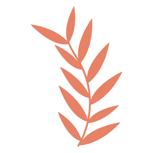 Leaves illustration transparent png. Drawing leaf clip free download