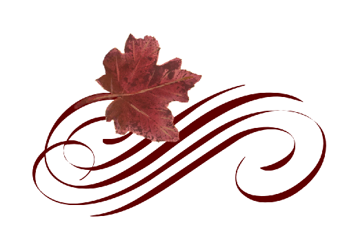 Leaves flourish png. Leaf flourishes documents and