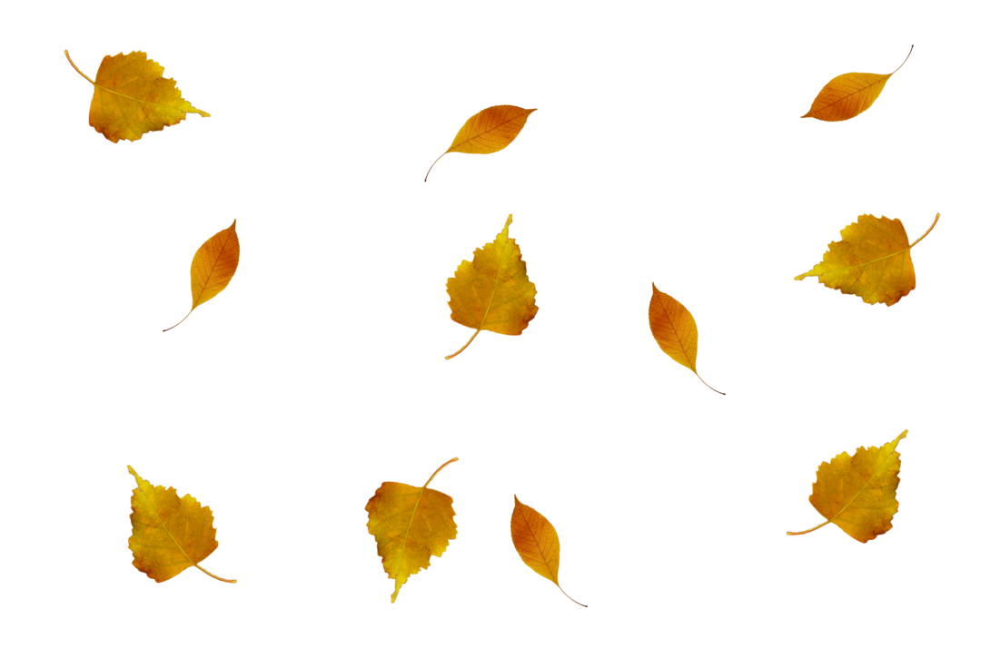 Leaves in the wind png. Hojas de otono by