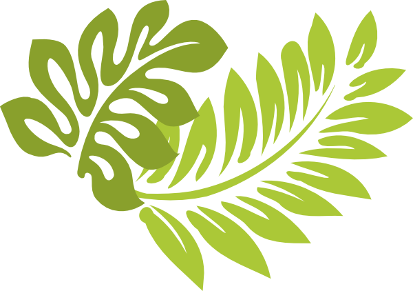 Leaves vector png. Hibiscus clip art at