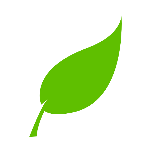 Leaves vector png. Collection of single