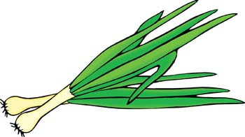 Leeks. Clipart graphic free image