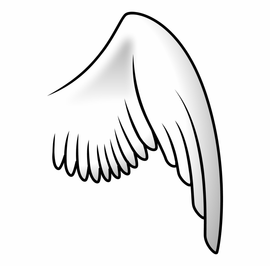 Left wing. Angel right clipart transparent