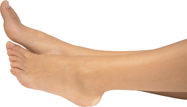 Legs and feet png. Images free download image
