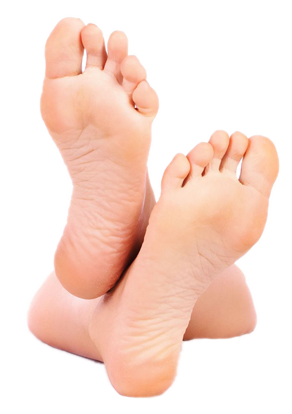 Legs and feet png. In web icons