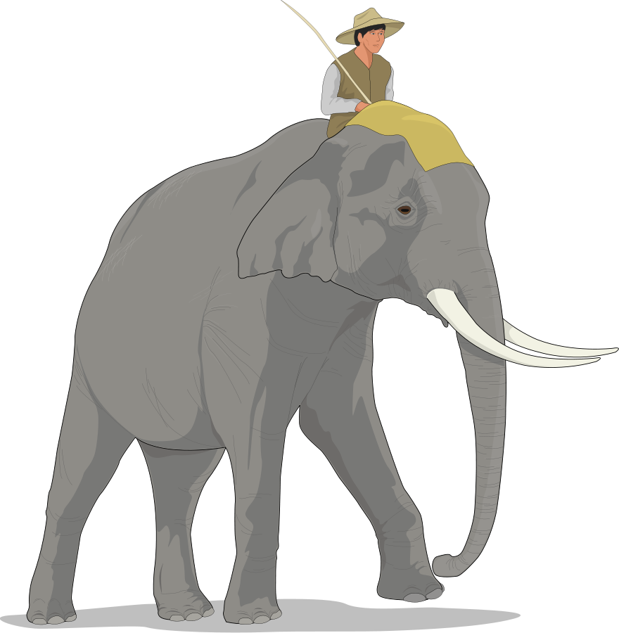 Php vector elephant. Free picture of a