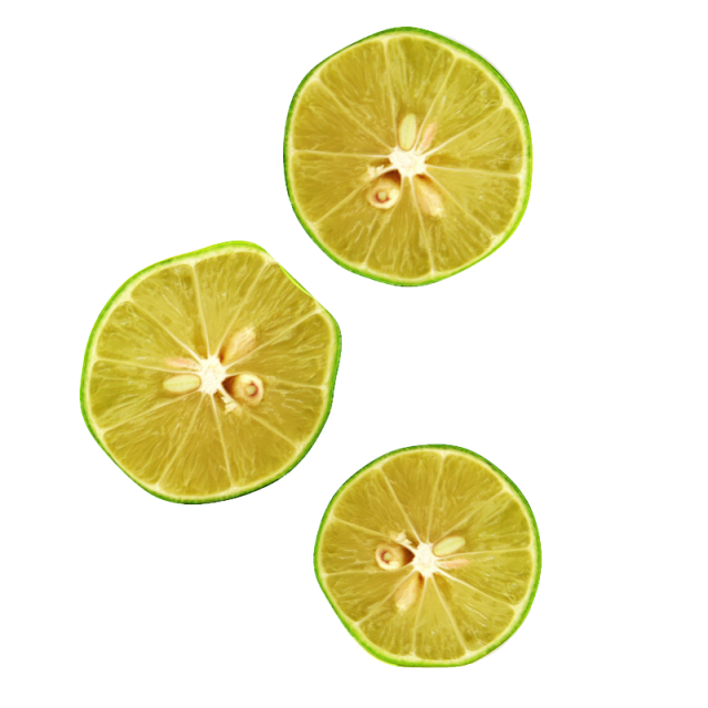 Lemon clipart psd. D realistic slices