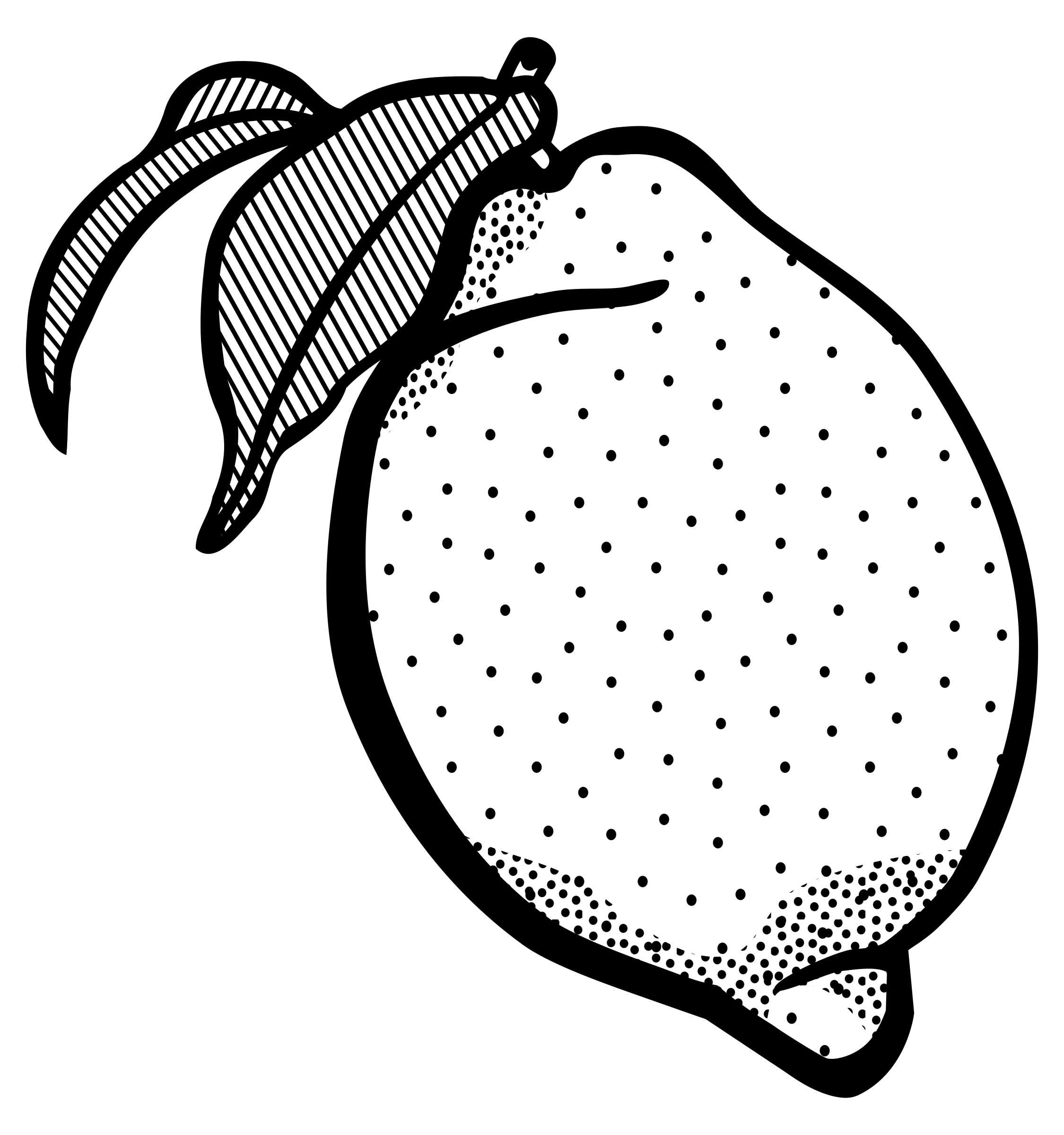 Lemon outline png. Collection of clipart